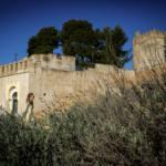 reyes-magos-de-mairena-del-alcor-mary-guillen-2